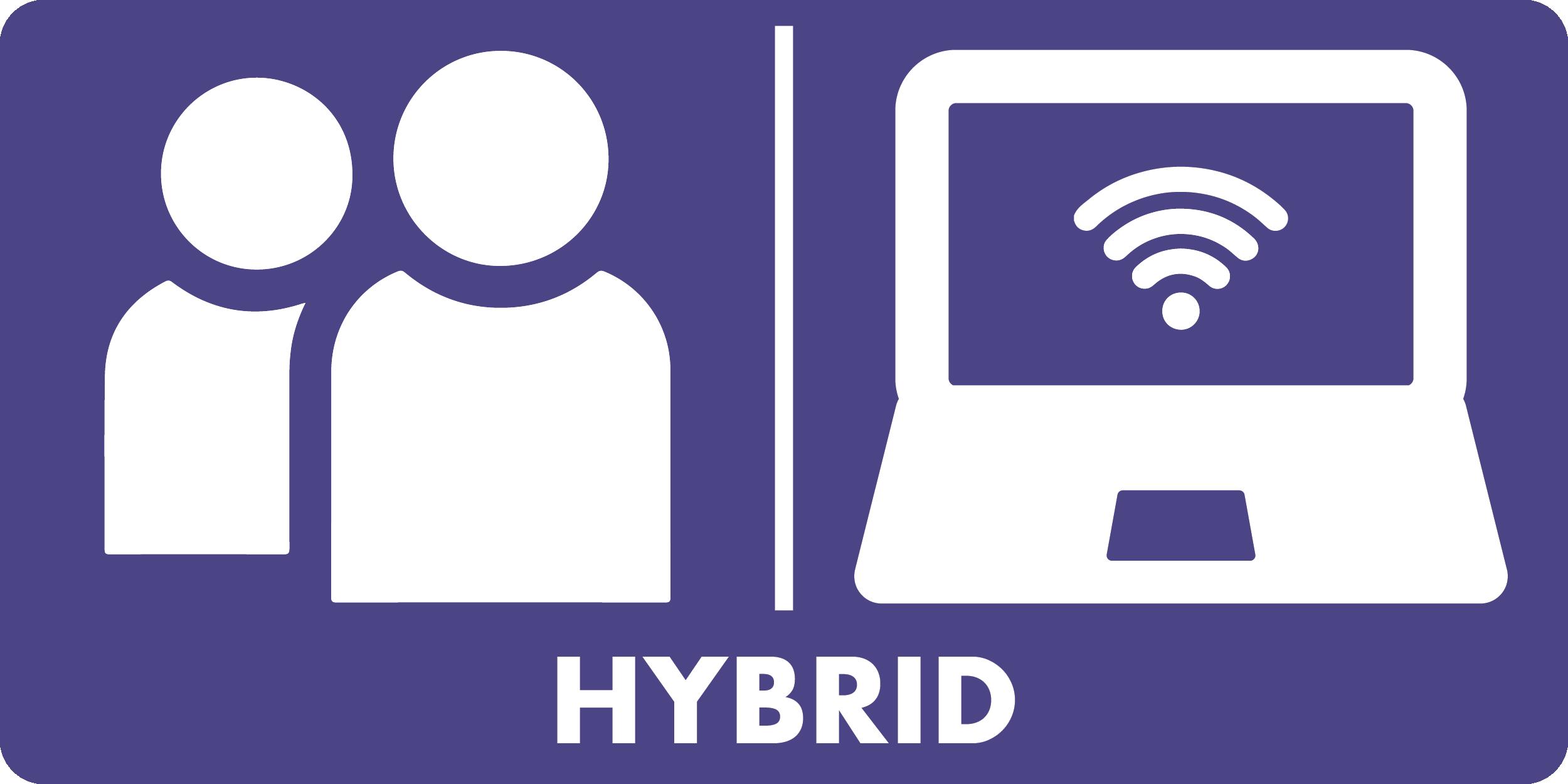 hybrid icon - solid
